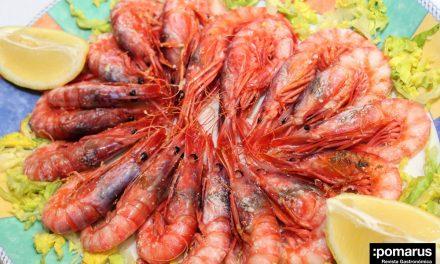 Presentación de las IV Jornadas Gastronómicas La Gamba Roja de Aguilas, del 20 de abril al 8 de mayo