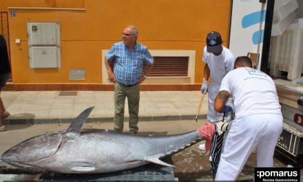 Espectacular ronqueo de un atún rojo en El Restaurante Los Churrascos