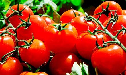 10 razones para consumir productos ecológicos