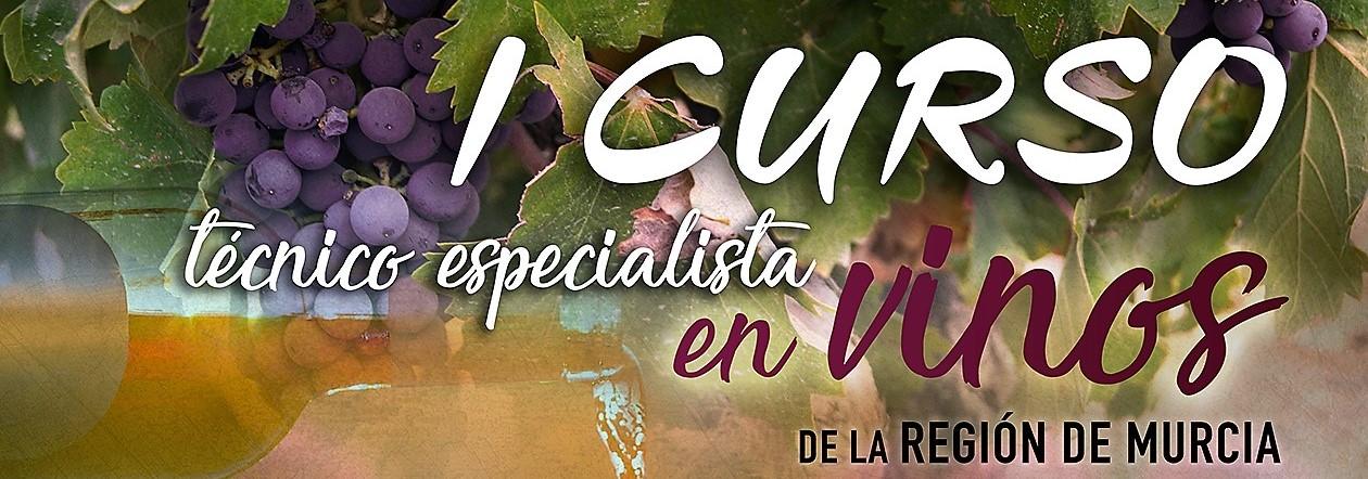 JORNADA 1: Técnico Especialista en Vinos de la Región de Murcia