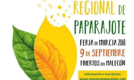 I Concurso Nacional de Paparajote