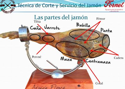 manual curso_Página_05