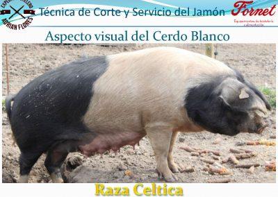manual curso_Página_07
