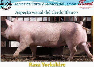 manual curso_Página_08