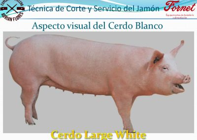 manual curso_Página_09