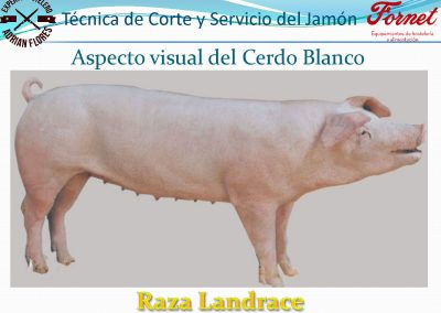 manual curso_Página_10