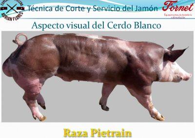 manual curso_Página_11