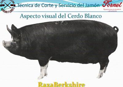 manual curso_Página_13