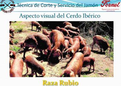 manual curso_Página_20