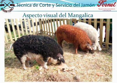 manual curso_Página_26