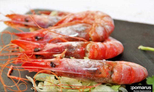 Restaurante El Tiburón: V Jornadas Gastronómicas de la Gamba Roja de Águilas