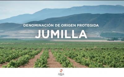 El CRDOP Jumilla se incorpora a FIVIN en pro de la divulgación de los aspectos beneficiosos sobre la salud del consumo moderado de vino